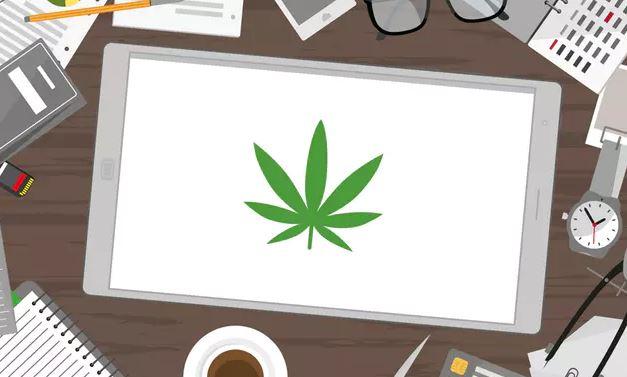 mercado del cannabis
