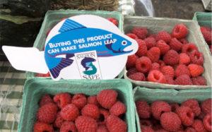 Salmon Safe eco label