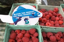Salmon Safe eco label