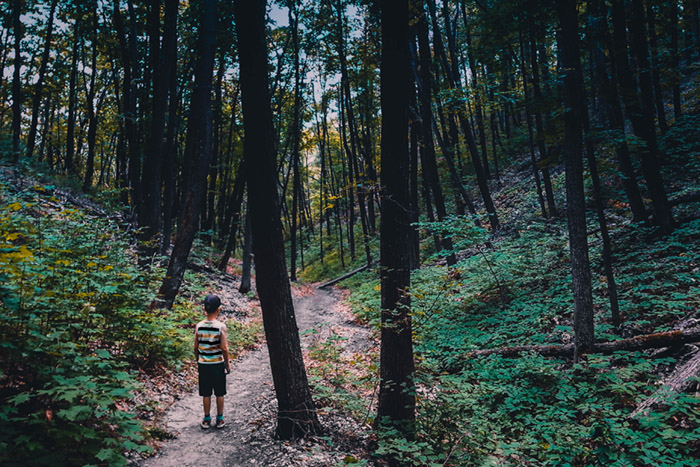 kids and nature