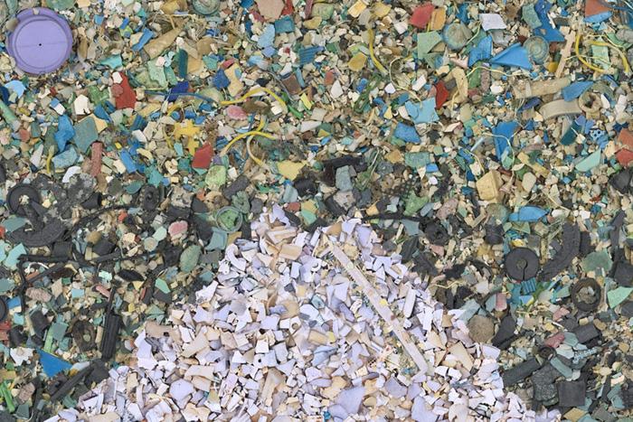 ingesting microplastics