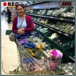 Blog Emagrecer Certo comer saudável