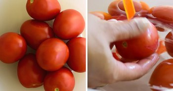 despelar tomate