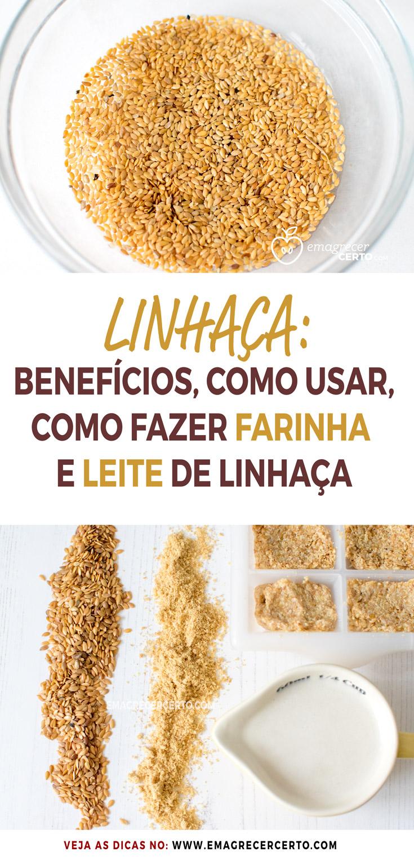 Linhaça, benefícios, como usar, como fazer a farinha e o leite de linhaça | Blog EmagrecerCerto.com