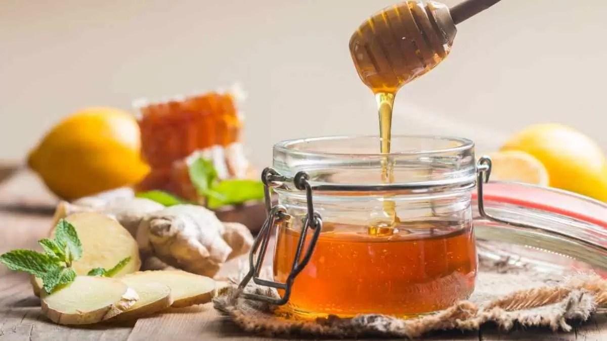 diabético pode comer mel