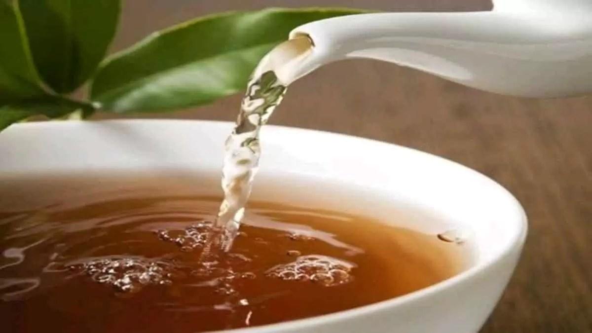 chá de folha de manga baixa glicose