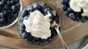 diferença do iogurte grego para os outros