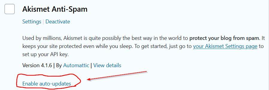 WordPress plugin auto update feature