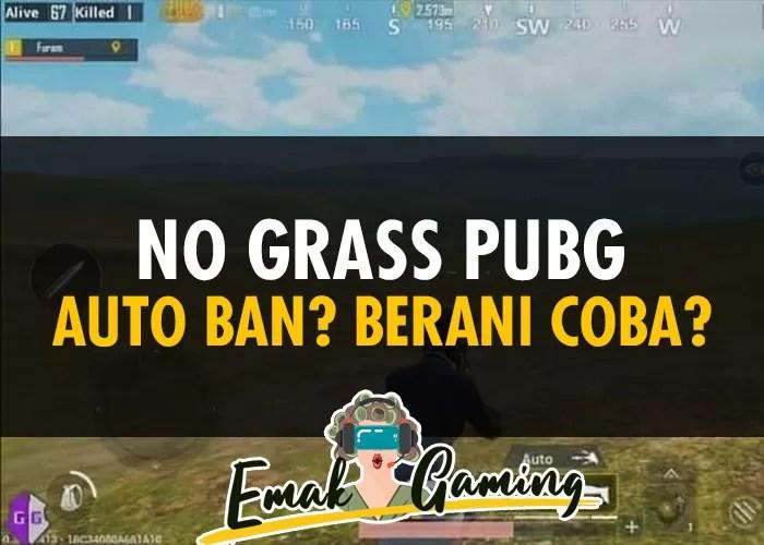 No Grass PUBG