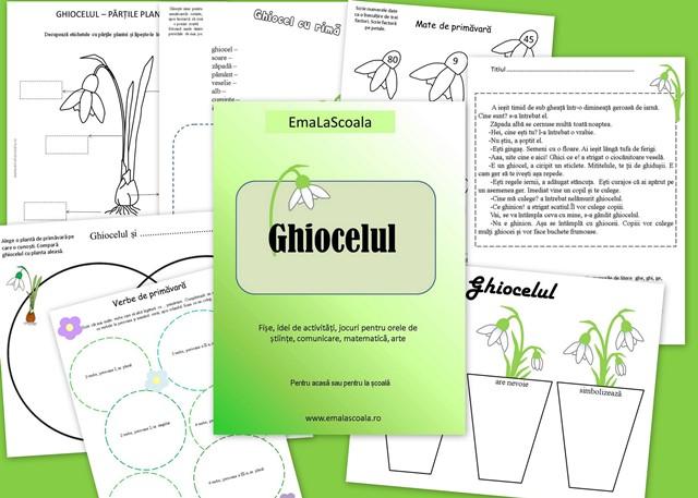 ghiocelul