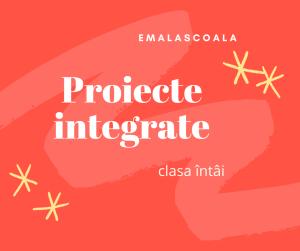 proiecte integrate