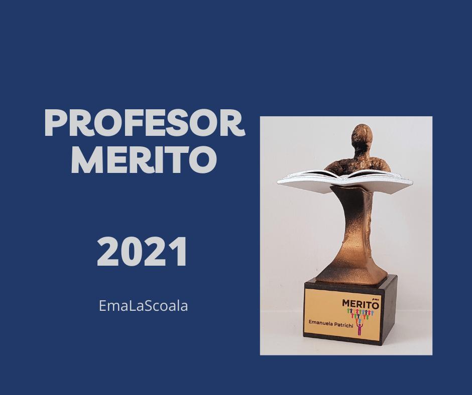 profesor merito