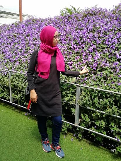 harga tiket lavender garden