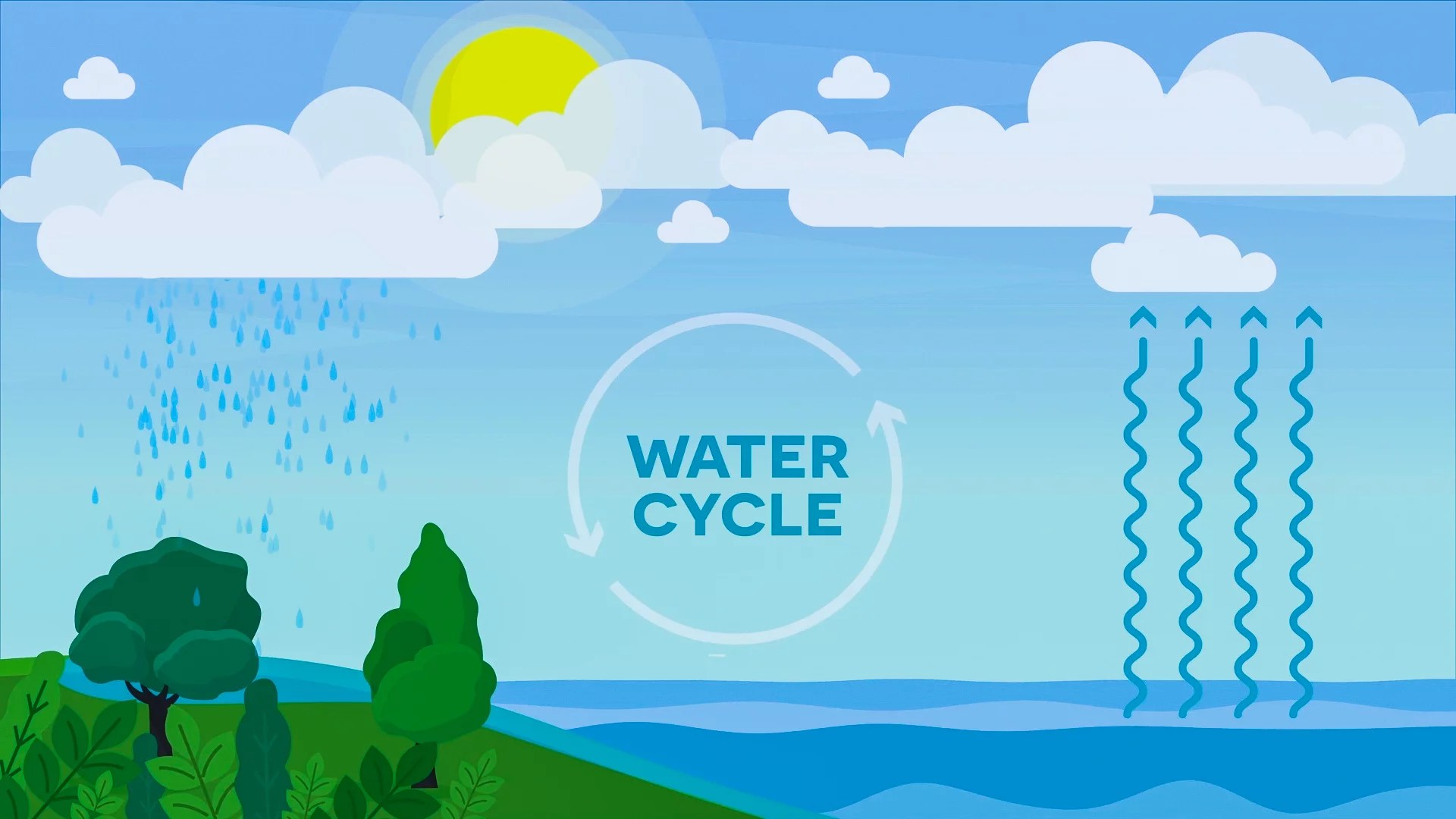 small resolution of Water Cycle (3-5 Version) Video For Kids   3rd