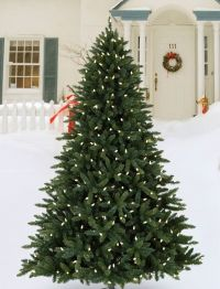 Outdoor Decorating Ideas for Christmas | Balsam Hill