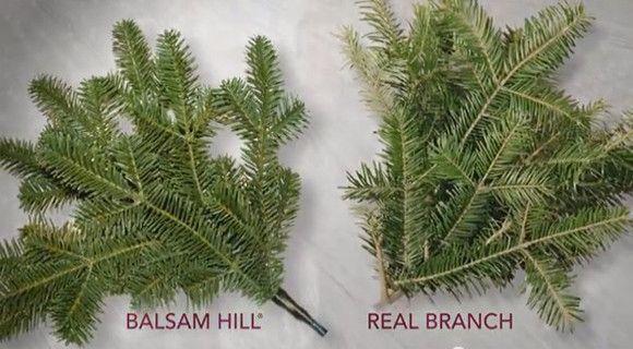 Traditional Vs Realistic Christmas Tree Balsam Hill