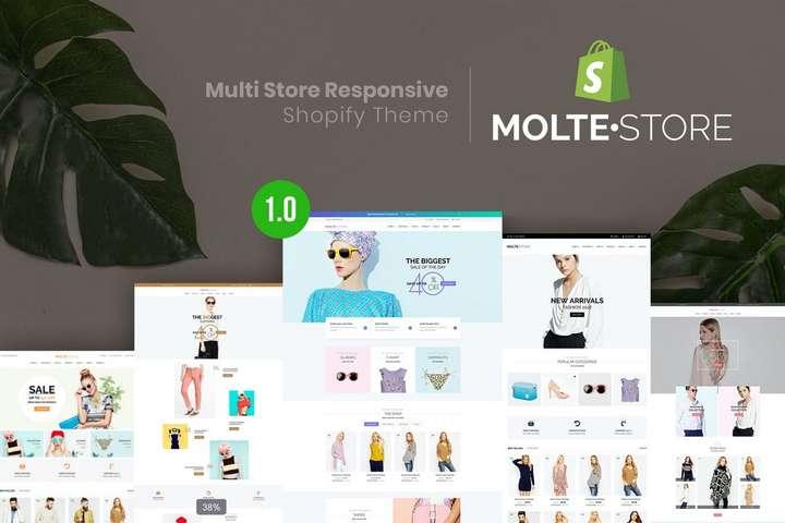 shopify multistore theme