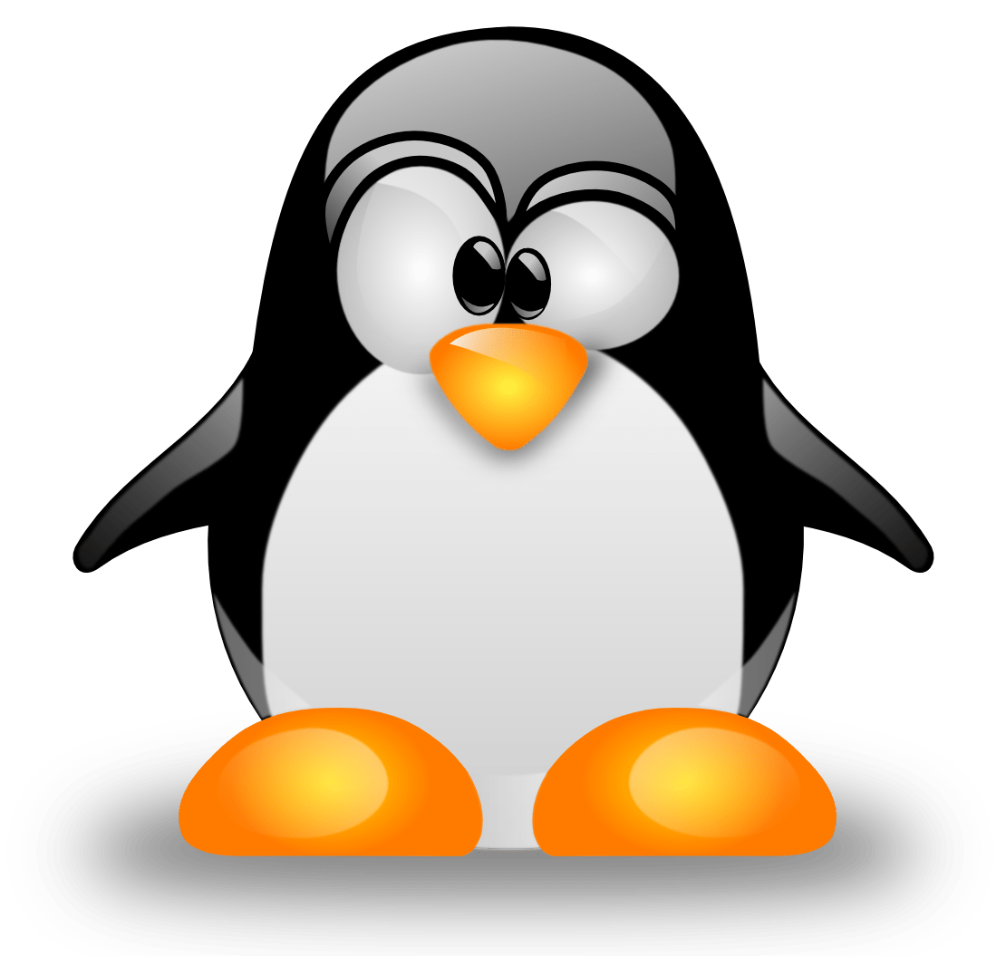 First Linux device driver