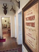 A view from the hallway of the third floor of the Observatory Museum. The Victorian style decor runs throughout the building. No word on if the mounted buck are also from the Victorian era. Photo: Heather Cameron.