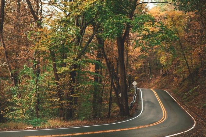 asphalt-background-blurred-background-1546898