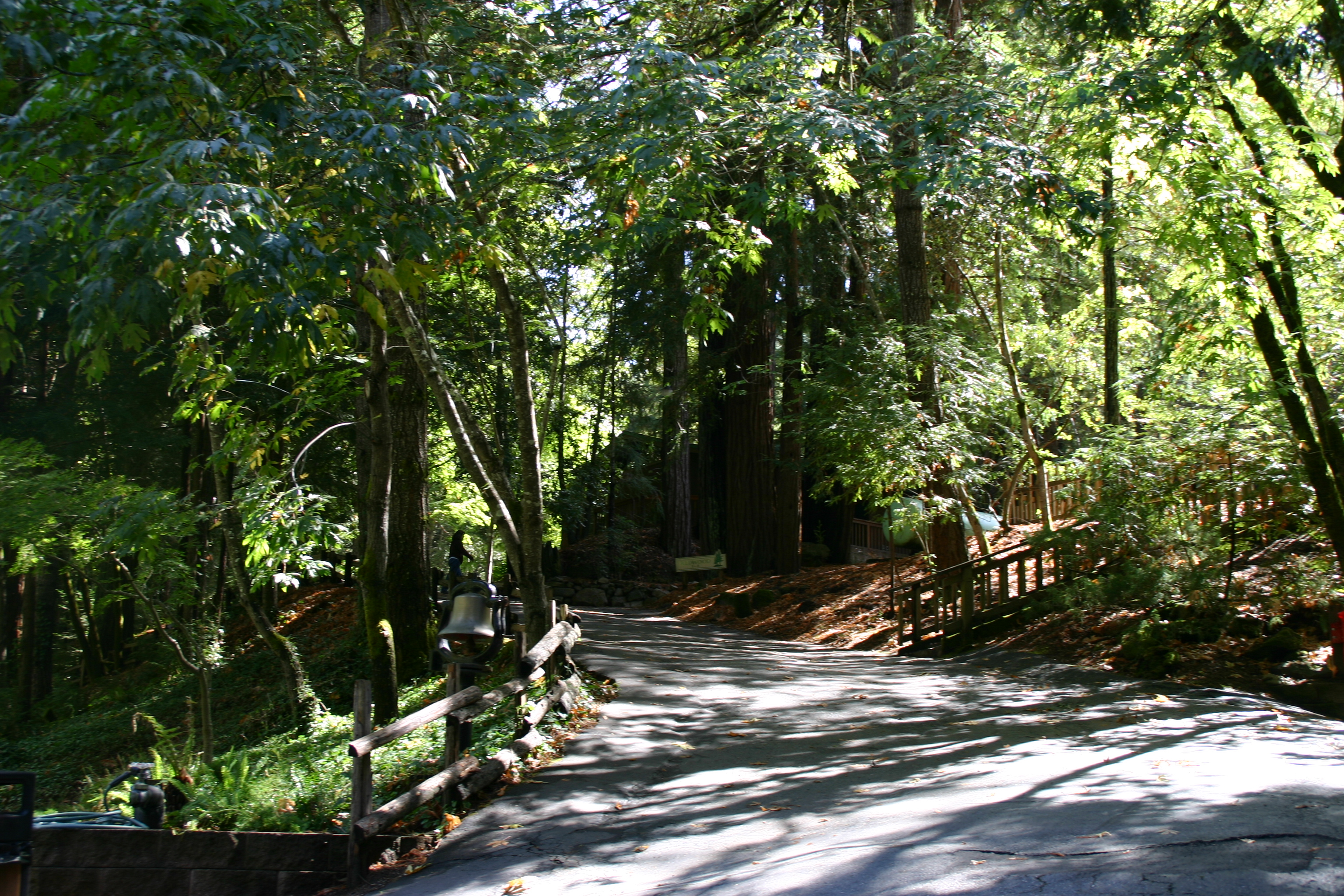 * a beautiful path to walk *