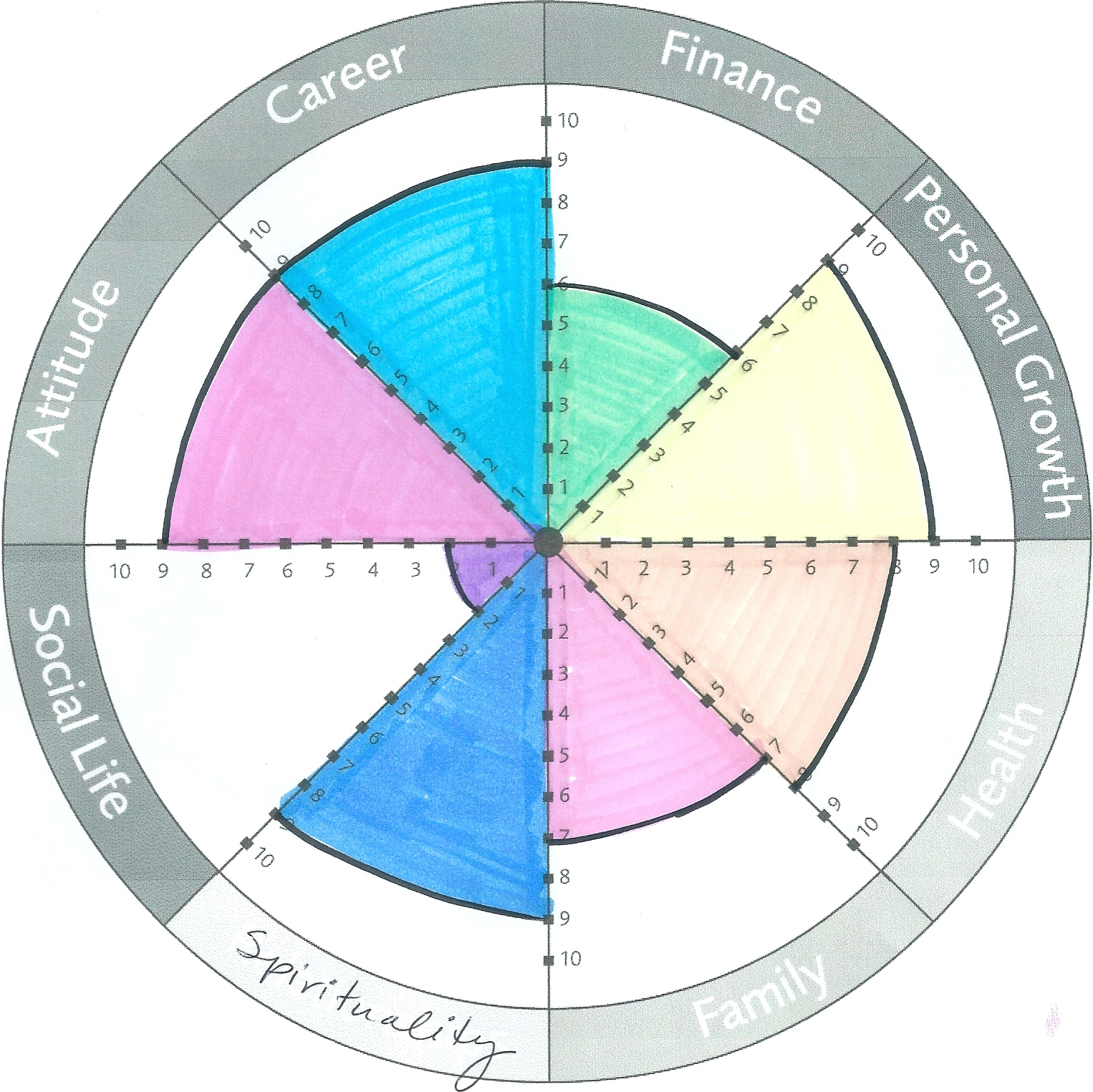 What Does Your Wheel Of Life Look Life