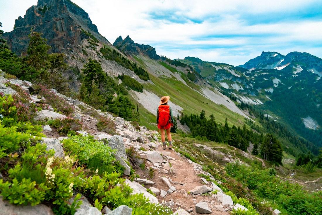 Best Walks Ranier National Park