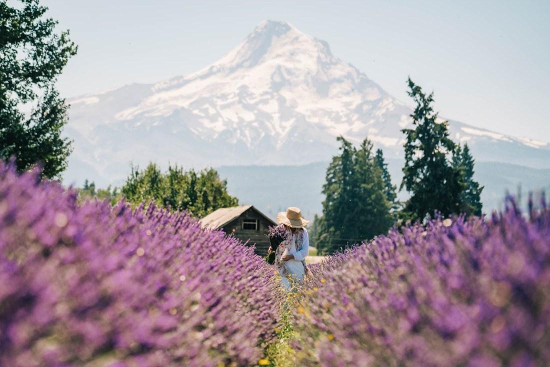 Seven Amazing Oregon