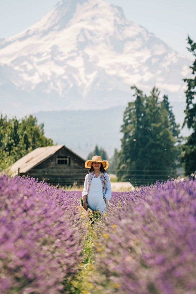10 Enchanting Lavender Farms in Oregon Worth the Drive