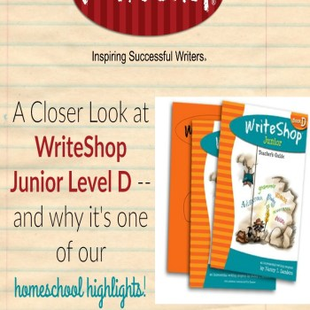 A Closer Look at WriteShop Junior Book D