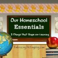 Our Homeschool Essentials: 3 Things that Shape our Learning