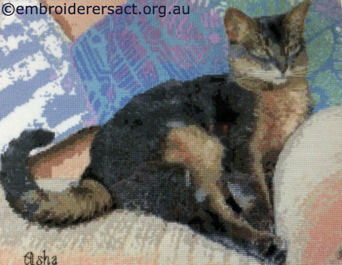 Asha Cat X-stitched by Barbara Bailey – Embroiderers' Guild ACT