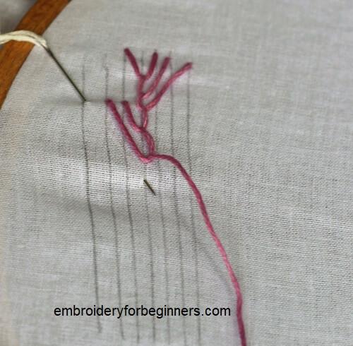 final stitch of maidenhair