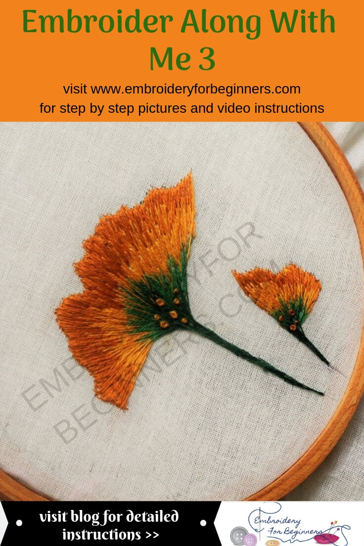 step by step pictures and video instructions for making the embroider along with me series 3