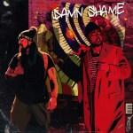 damnshame_cover.JPG