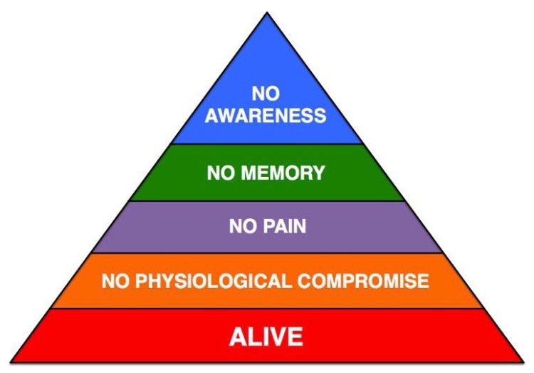 hierarchy of em intubation needs