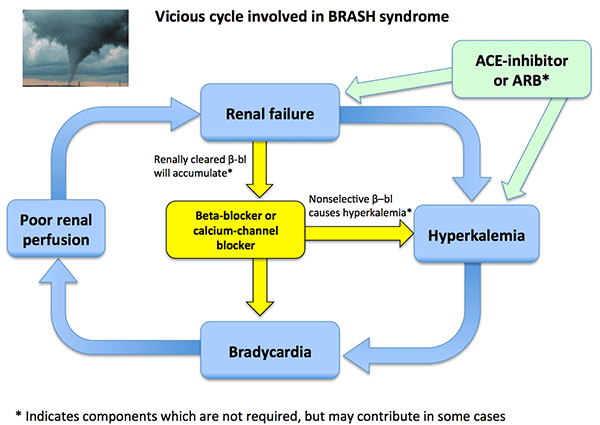 Pulmcrit Brash Syndrome Bradycardia Renal Failure Av Blocker Shock Hyperkalemia
