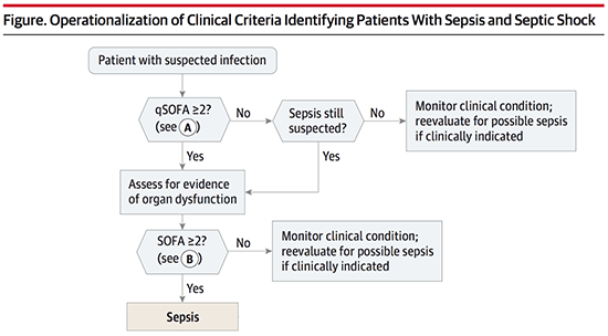 Pulmcrit Top Ten Problems With The New Sepsis Definition
