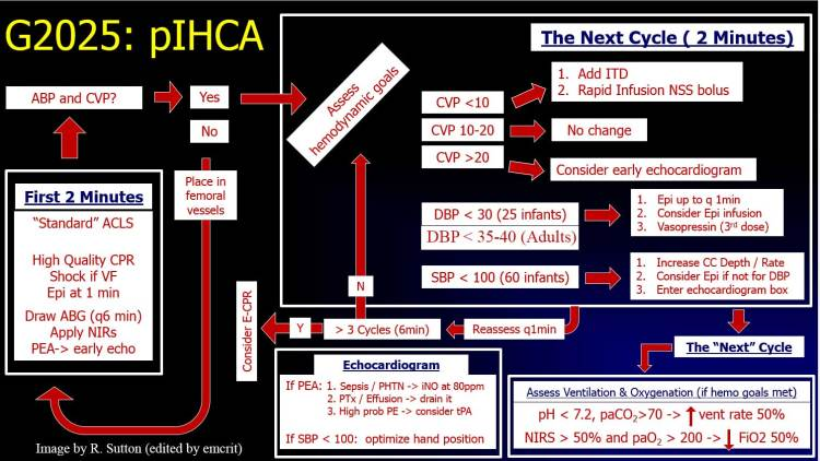 EMCrit RACC 228 - Physiology-Guided Cardiac Arrest Management in