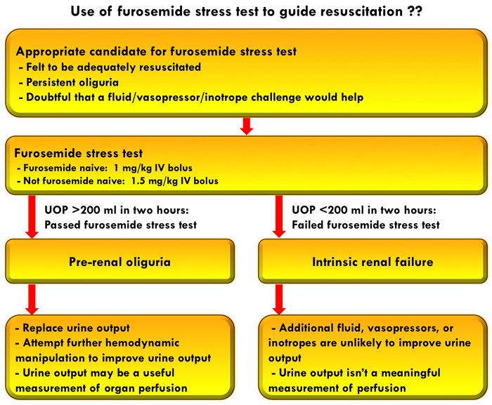 Pulmcrit Could The Furosemide Stress Test Clarify Resuscitative Goals