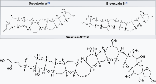 Brevetoxins and Ciguatoxins created by Minutemen using BKchem 0.11.4 & Inkscape 0.44 - Own work from https://en.wikipedia.org/wiki/Ciguatera_fish_poisoning#/media/File:Ciguatoxin.svg and https://en.wikipedia.org/wiki/Brevetoxin