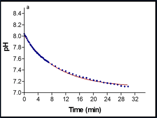 Figure 34. pH changes in real time (pH meter) during ATPase hydrolysis in unbuffered solution (data from Rob).