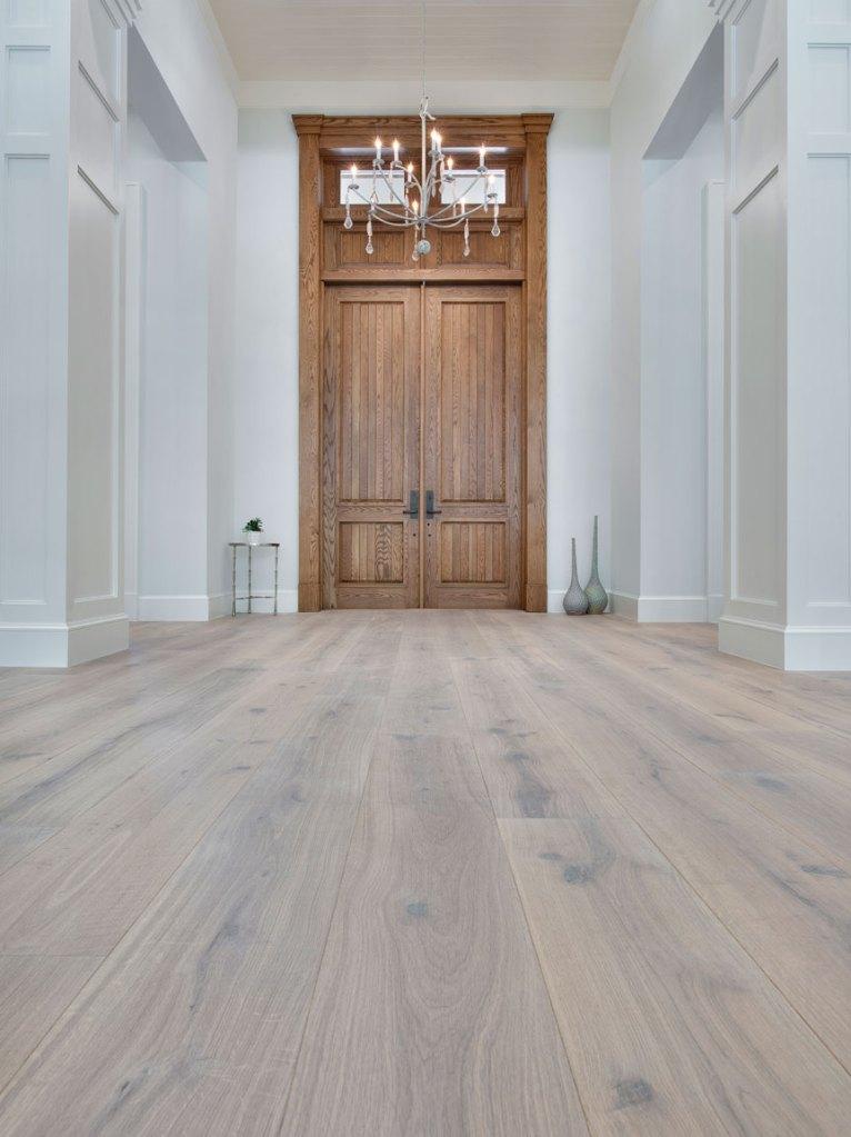 foyer with hardwood flooring