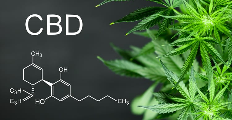 Ingredients   Cbd image of chemical composition