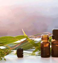 EMERA CBD Conditioner | Ingredients - Eucalyptus