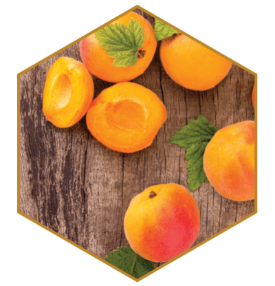 Apricot Oil Natural Hair Ingredient