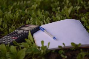 A notepad, a pen and a scientific calculator lay on a bed of leaves ready to plan those eco-weddings.
