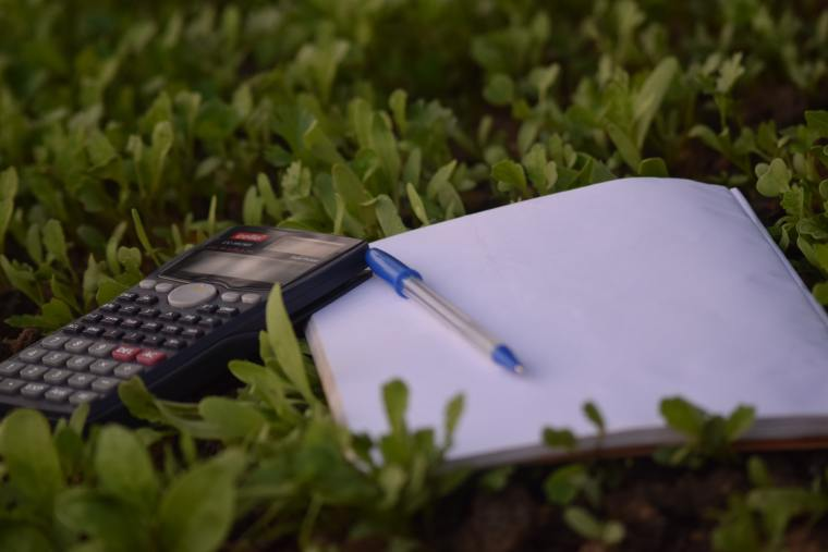 A notepad, a pen and a scientific calculator lay on a bed of leaves
