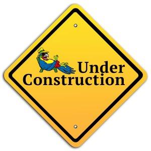 under-construction-parrot