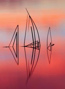 Ames Stephanie-Siltcoos Sunrise Reeds